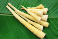 Bamboo shoot on banana leaf Royalty Free Stock Photo
