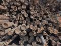 Bamboo stalk Royalty Free Stock Photo