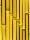 Bamboo stalks Royalty Free Stock Images