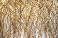 Bamboo sticks Royalty Free Stock Photo