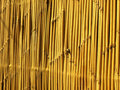 Bamboo strips Stock Photography