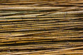 Bamboo texture Royalty Free Stock Photo