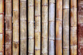 Bamboo texture background from old sticks wood Stock Images