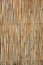 Bamboo texture close up old and dirty used as rural house wall Stock Photos
