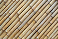 Bamboo texture the of the dried sticks Stock Photography