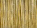 Bambus štruktúrovaný