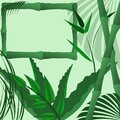 bamboo tropical agave leaves palm pattern frame template