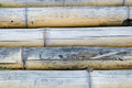 Bamboo trunks texture of in detail Royalty Free Stock Images