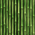 Bamboo Wall Stock Photos