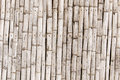Bamboo Wall - Ecological Man Made Structure Royalty Free Stock Photo