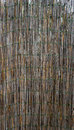 Bamboo wall fence vertical Royalty Free Stock Photo