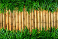 Bamboo wall and grass  Stock Photography