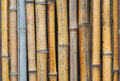 Bamboo wall vertical background pattern Royalty Free Stock Photo