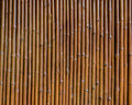 Bamboo wall vertical texture background Royalty Free Stock Image