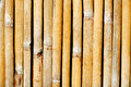 Bamboo walls texture,blade bamboo wall textures and backgrounds Royalty Free Stock Photo