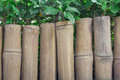 Bamboo wooden fence with green leaf Royalty Free Stock Photo