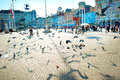 Ban jelacic square zagreb croatia october flock of pigeon at the central of the city the oldest standing building here was Stock Photos