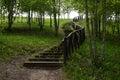 Bana med en trätrappuppgång i skogen Royaltyfri Fotografi