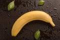 Banana and basil leaves Royalty Free Stock Photo
