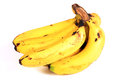 Banana bunch beautiful shot of on white background Stock Images