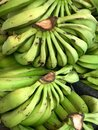Banana Bunches at a Farmer`s Market in Brazil Royalty Free Stock Photo