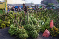Banana the buyer selects the bananas sold in the market in the town of solo central java indonesia Royalty Free Stock Photos