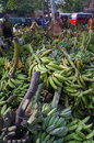 Banana the buyer selects the bananas sold in the market in the town of solo central java indonesia Royalty Free Stock Images