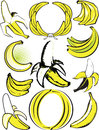 Banana collection clip art of various styles and shapes of bananas Royalty Free Stock Photo