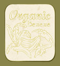 Banana label fresh organic vector illustration retro fruitl design vector old paper texture background Royalty Free Stock Photography