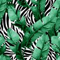 Banana leaf on animal print seamless pattern. Unusual tropical leaves, tiger stripes background Royalty Free Stock Photo