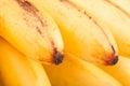 Banana Macro