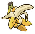 Bananas Royalty Free Stock Photo