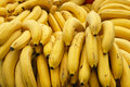 Bananas bunch of yellow ripe at market Stock Image