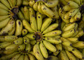 Bananas at the creole market Royalty Free Stock Photos