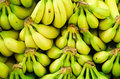 Bananas on display image of many Royalty Free Stock Photos