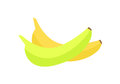 Bananas Vector Illustration In Flat Style Design. Royalty Free Stock Photo