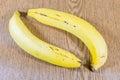ฺฺbananas on wooden background fresh bananas Stock Image