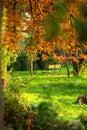 Banco di sosta in autunno   Fotografia Stock