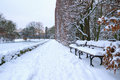 Banco nella sosta all'inverno nevoso Fotografia Stock