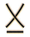 Bandolier with bullets. Ammunition belt. Tape cartridges Royalty Free Stock Photo