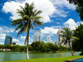 Bangkok with blue sky and tree in sunny day Royalty Free Stock Photography