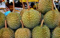 Bangkok, Thailand: Durian Fruits at Market Stock Images