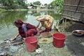 Bangladeshi women washing clothes in a lake Royalty Free Stock Photo