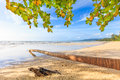 Bangsak beach in blue sky and palm trees at phangnga thailand Stock Images