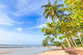 Bangsak beach in blue sky and palm trees at phangnga thailand Royalty Free Stock Photos