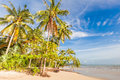 Bangsak beach in blue sky and palm trees at phangnga thailand Stock Image