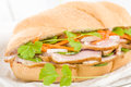 Banh mi crusty bread filled with smoked duck breast slices carrot and daikon radish pickle do chua and green chilies garnished Royalty Free Stock Photography