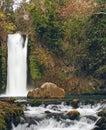 Banias waterfall Stock Photography