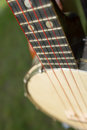 Banjo detail of a with selective focus Stock Photo