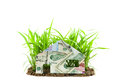 Banknotes Euro and Dollars with house on Young green grass growi Royalty Free Stock Photo